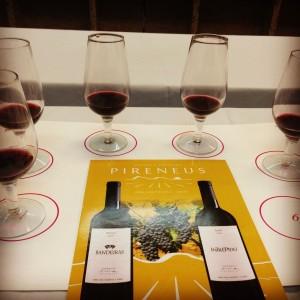 Blog Vinho Tinto participa de degustação de vinhos goianos