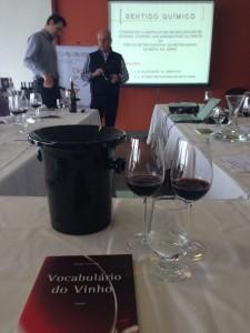 Técnicas de degustação e de vinificação foram abordadas durante o curso