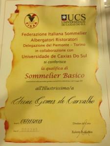 Certificado de Sommelier Básico