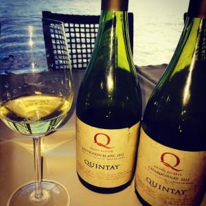 Chardonnay e Sauvignon Q Grand Reserva da Quintay - vinhos muito bons com preços justos