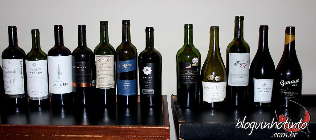 Ao todo 13 vinhs degustados de variadas safras, uvas e regiões do Chile e da Argentina