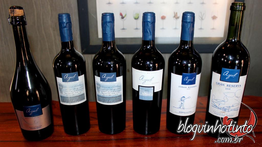 Alguns dos excelentes vinhos produzidos pela La Azul - Apenas 80.000 litros por ano