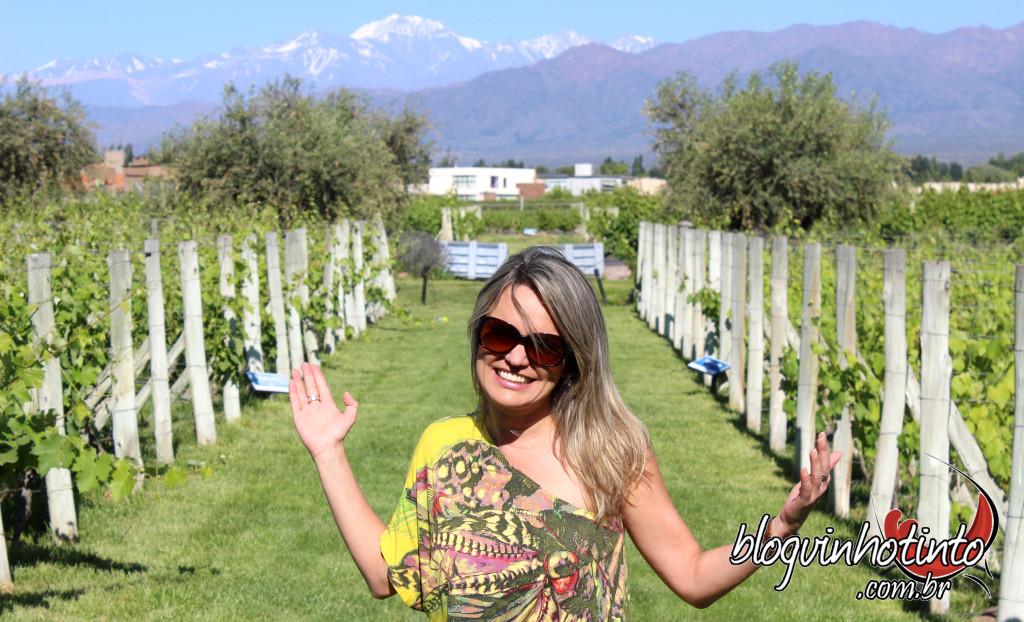Luján de Cuyo é uma província situada a 30km do centro de Mendoza bem aos pés da Cordilheira, entre 900 e 1.100 metros de altitude.