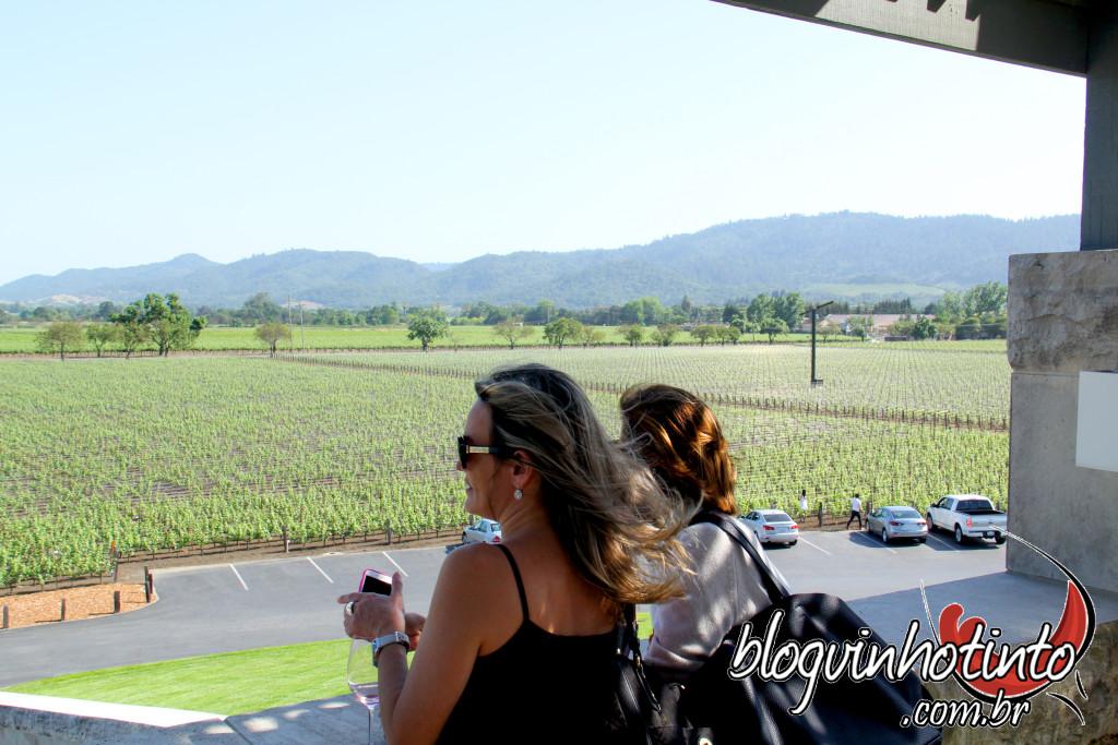 No terraço da Opus One é possível apreciar as montanhas da região - como as Mayacamas que aparecem na foto.