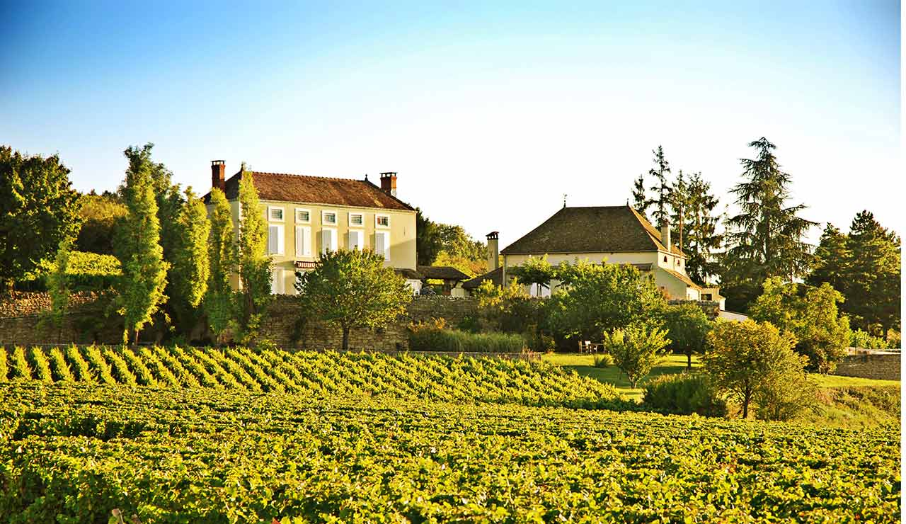 Portico_Burgundy_France_ClosDesVielleVignes_Exterior_Vineyard2_ResHeader