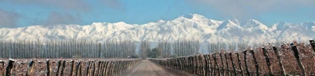 Além de Vinhos, você também poderá esquiar nos Andes