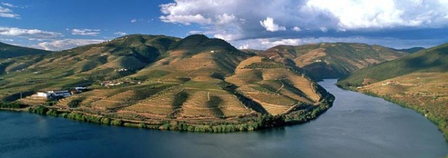 Douro - primeiro registro encontrado de uma denominação de origem de vinhos