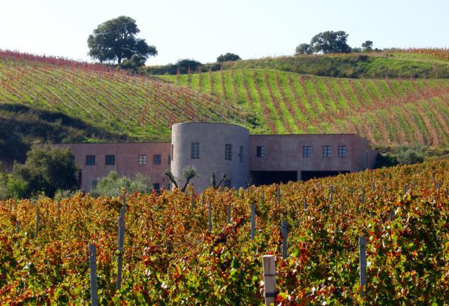 Contornada por montanhas e próxima ao mar, assim está localizada a vinícola que ser