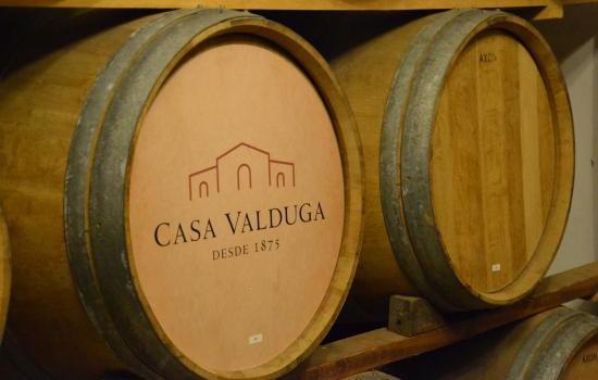 vinicola-casa-valduga