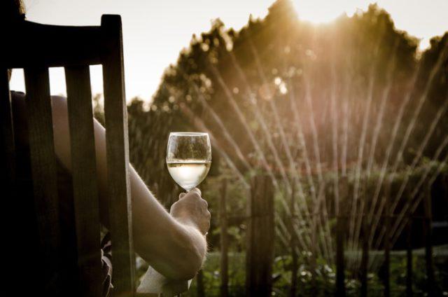 O Wine Movie mescla o ambiente e cinema clássicos à possibilidade de aproveitar tudo isso com os vinhos e espumantes da Vínicola Peterlongo