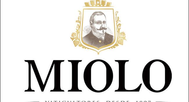 miolo-1