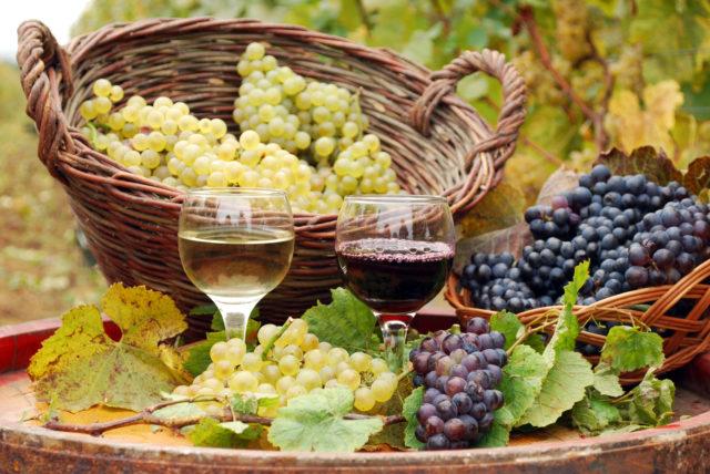 Vinho tinto e branco com uvas do outono