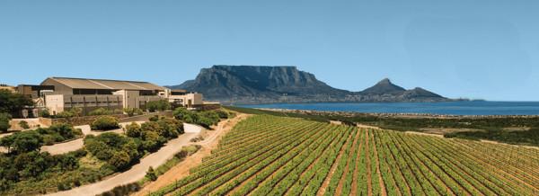 Durbanville Hills, localizada em Western Cape, foi criada em 1990