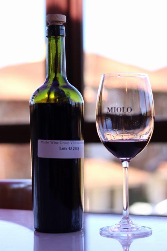 Lote 43 2018 que ainda está maturando. O vinho vai ficar mais seis meses em barrica e 2 anos em garrafa antes de ser comercializado