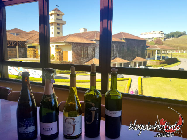 Degustação dos principais vinhos da Miolo com uma bela vista da vinícola