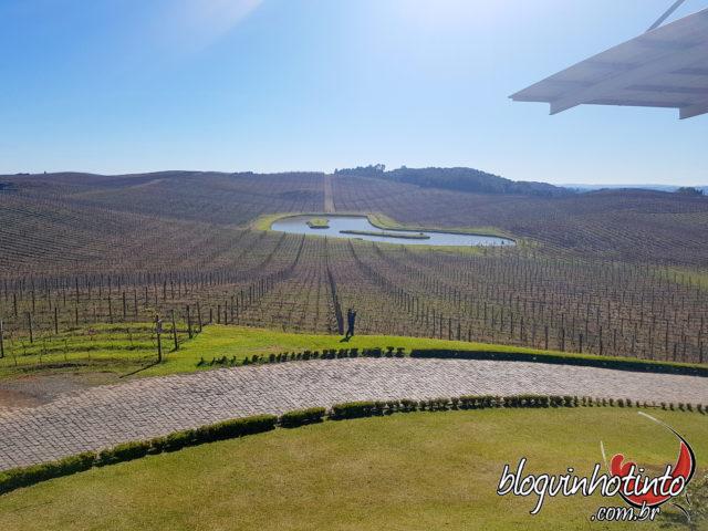 140 hectares de área total, com 55 hectares de vinhedos próprios onde são produzidos 17 variedades de uvas