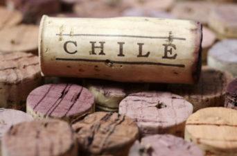 Vinhos do Chile