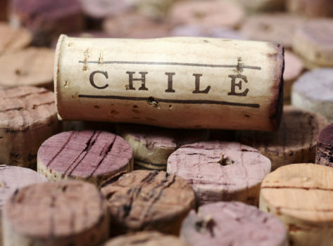 Vinhos do Chile