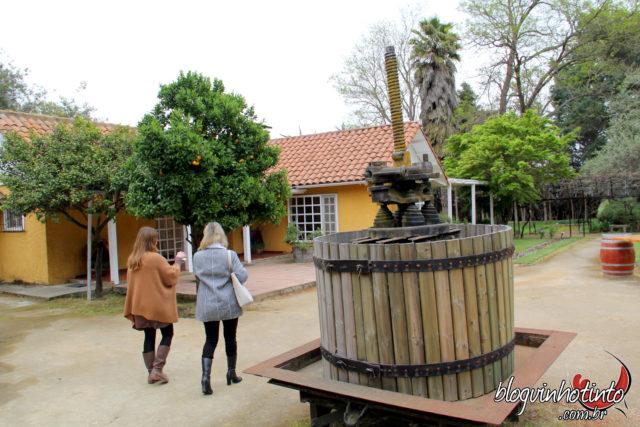 Loma Larga: Atualmente produz vinhos de alta gama de duas únicas linhas: a Loma Del Valle e a Loma Larga.