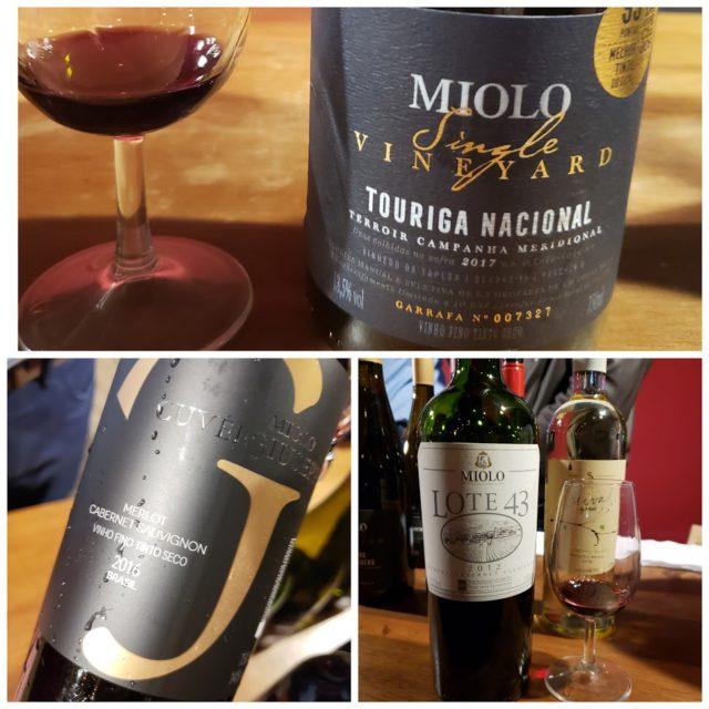 Seleção de Vinhos da Miolo na Vinum Brasilis