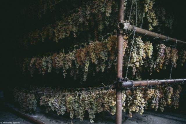Il Fruttaio,  da fotógrafa italiana  Alessandra Spairani