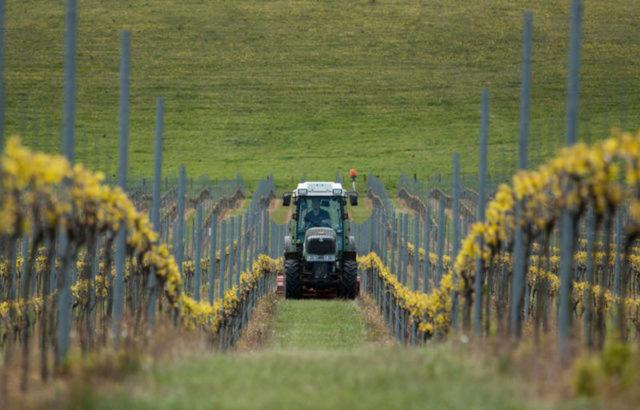 Vinícola de Rathfinny Wines, propriedade que dá espumantes na costa da Inglaterra  (FOTO: Reprodução)