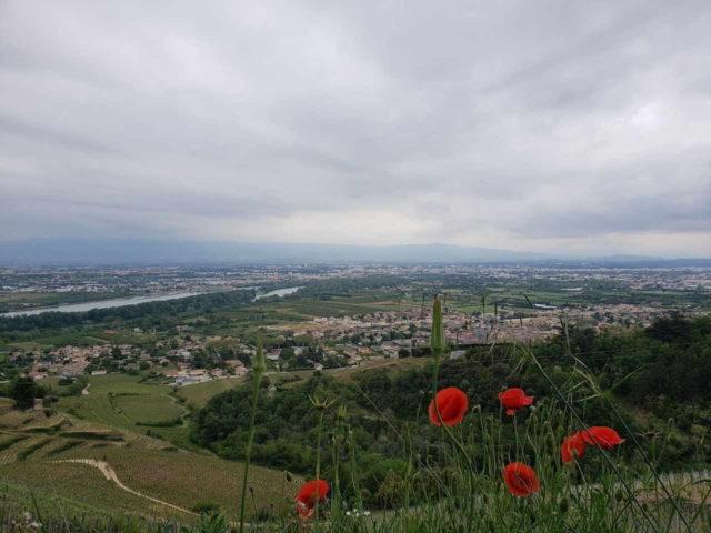 Vista do Rio Rhône