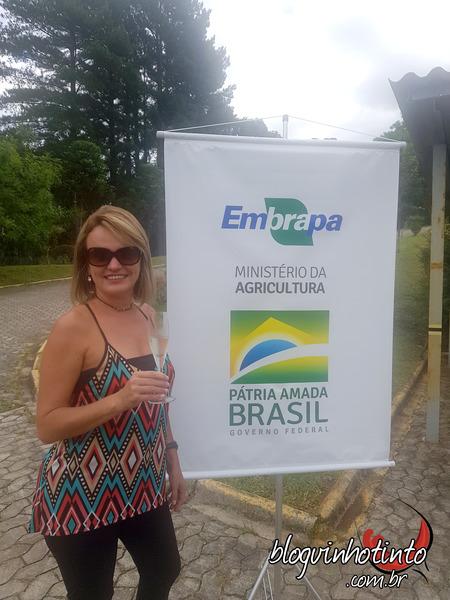 Curso de Elaboração de Vinhos na Embrapa de Colombo-PR