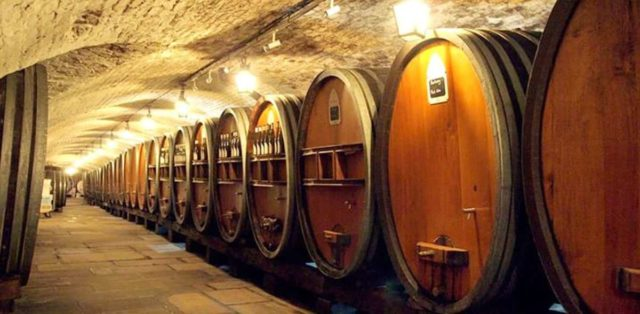 qual o vinho mais antigo do mundo