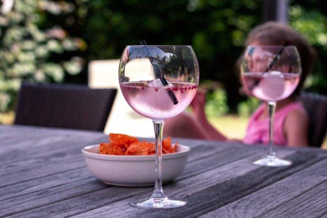 Gin com vinho