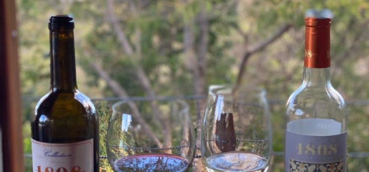 Vinho 1808