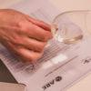 avaliação de vinho