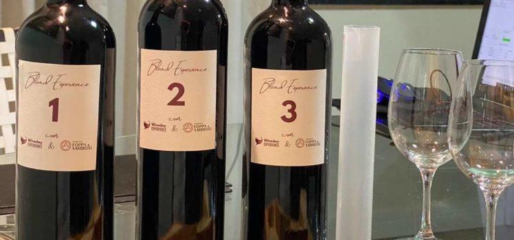 Vinhos Blend Experience