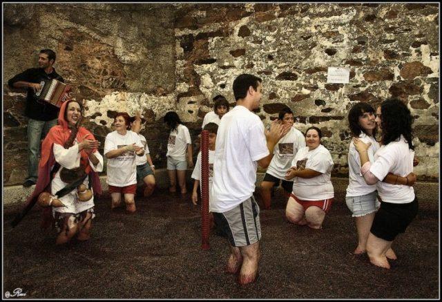 Vinho do Porto - Pisa Tradicional