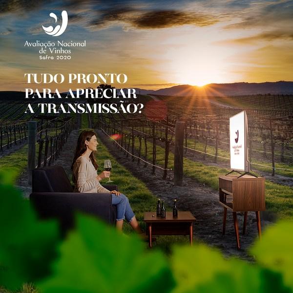 Avaliação Nacional do Vinnho 2020