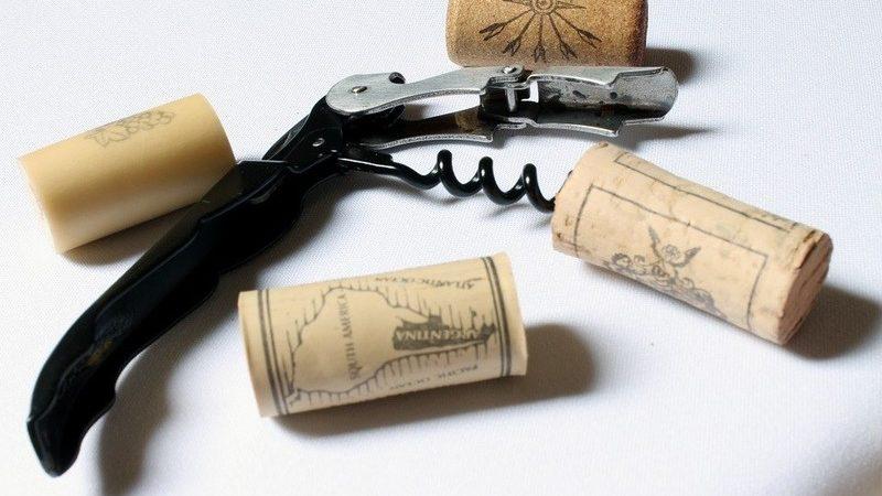 Curso Sommelier de Vinho em Módulos - novidade
